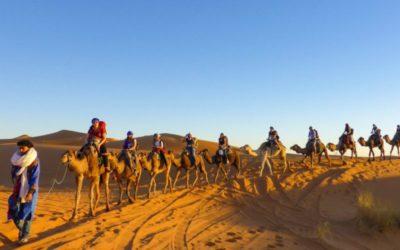 Marokko Reisetipps, Wüstensafari in der Sahara von Marokko