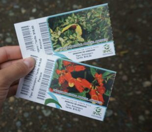 Costa Rica Nationalpark Preise